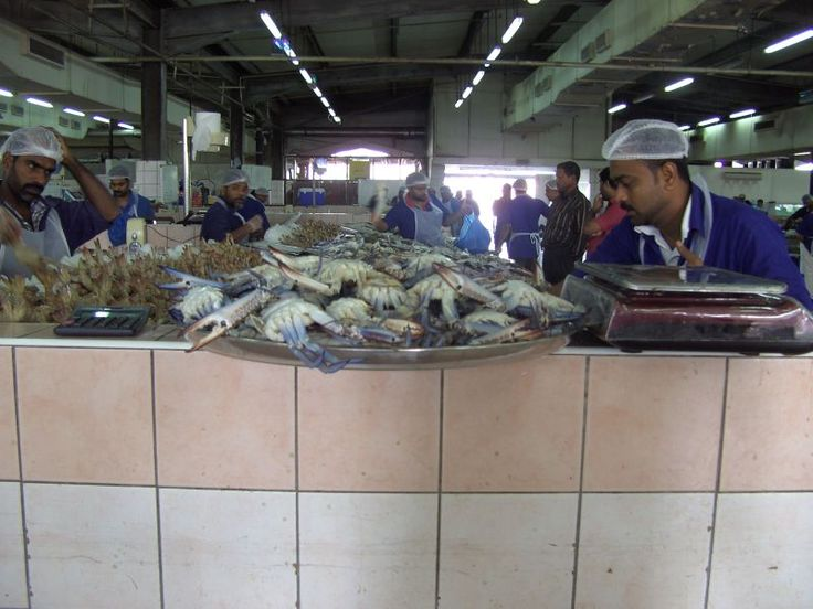Fish market- Abu Dhabi