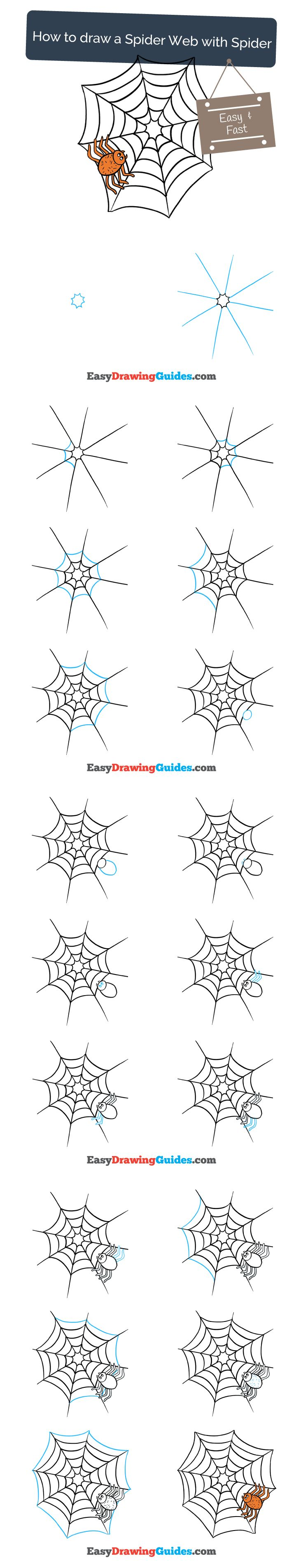 Learn How to Draw a Spider Web: Easy Step-by-Step Drawing Tutorial for Kids and Beginners. #spiderweb #drawing #tutorial. See the full tutorial at https://easydrawingguides.com/draw-spider-web-spider/