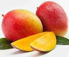 A manga é uma fruta nutritiva de alta qualidade que traz grandes benefícios para a nossa saú...
