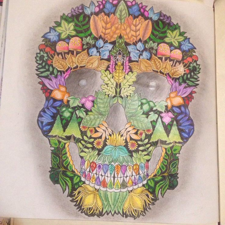 Enchanted Forest Skull Adult ColoringColoring BooksSugar