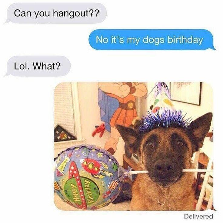 """""""No it's my dogs birthday."""" - if I had a dog hahaha"""