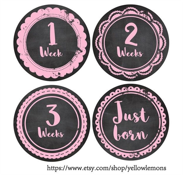 "Baby milestone card ""PINK CHALK""  circle, scalloped circle, chalkboard, Shower Gift, One-Piece Baby Stickers, Monthly Baby Stickers, by yellowlemons on Etsy"