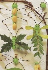 Gather some leaves & twigs and make some fun and colourful leaf bugs.