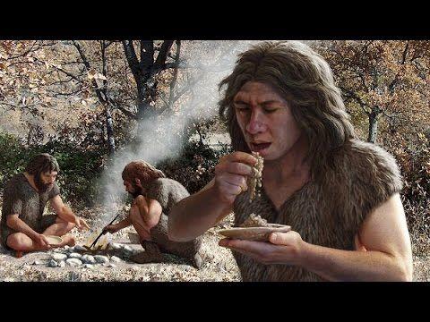 Human Evolution: History Of Humanity Documentary - YouTube