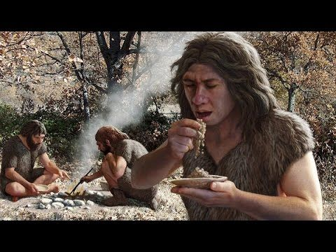 Human Evolution: History Of Humanity Documentary - YouTube