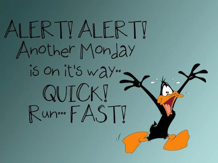 weekend over quotes images  The Weekend Is Almost Over  1  Pinterest  Mon...