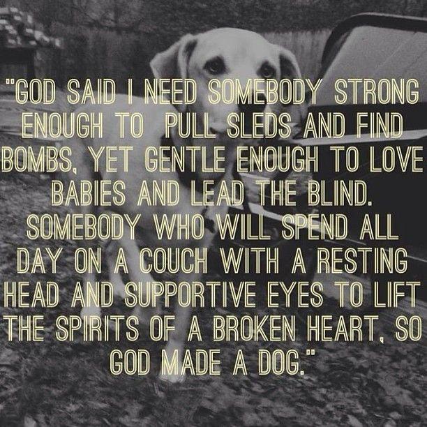 so God made a dog.