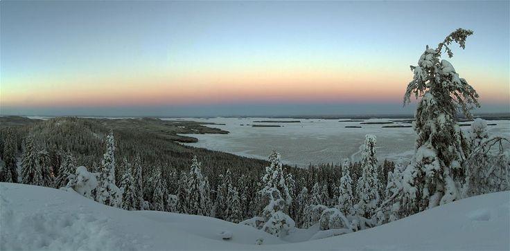 Valokuvaus - Koli.fi > photo:Jari Leivo