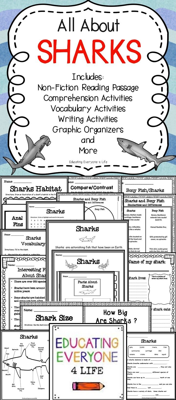 Children love learning about sharks. This All About Sharks resource includes everything you need to teach your students about shark habitat, facts about sharks, the parts of a shark, and more. Click here to download this amazing classroom resource!
