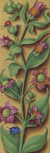 Jean Bourdichon, Grandes Heures d'Anne de Bretagne, 1503-1508 (BnF, Paris, Ms. lat. 9474)