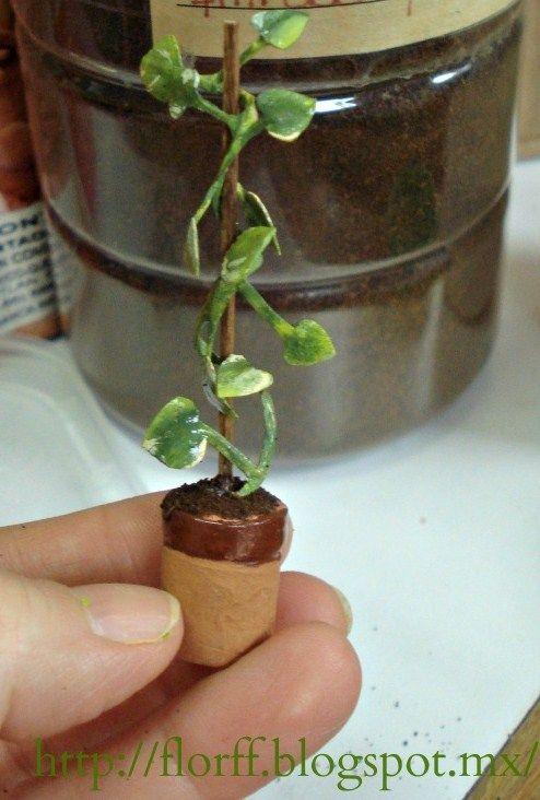 7650 best miniaturas de jard n miniature garden images What are miniature plants grown in pots called