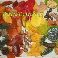 Jesień - kolorowanki, szablony, ćwiczenia grafomotoryczne, zajęcia plastyczne…