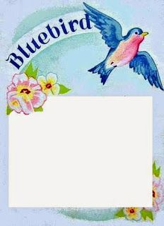 bumble button: Free Vintage Bluebird Brand Button Cards for You to Print.