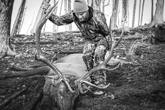 31 Tips for the Ultimate Elk Hunt
