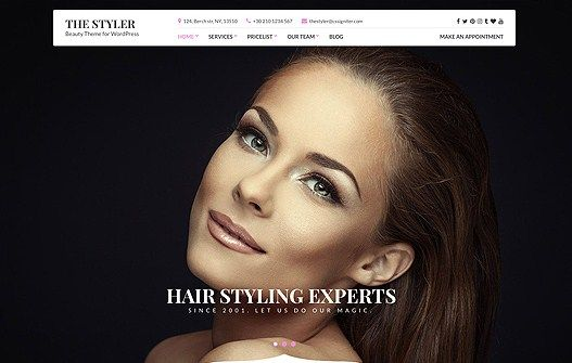 Download CSS Igniter The Styler WordPress Theme v1.1.0 Download CSS Igniter The Styler WordPress Theme v1.1.0 Latest Version