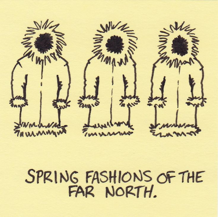 spring humor | four high school boys afflicted with spring fever skipped morning
