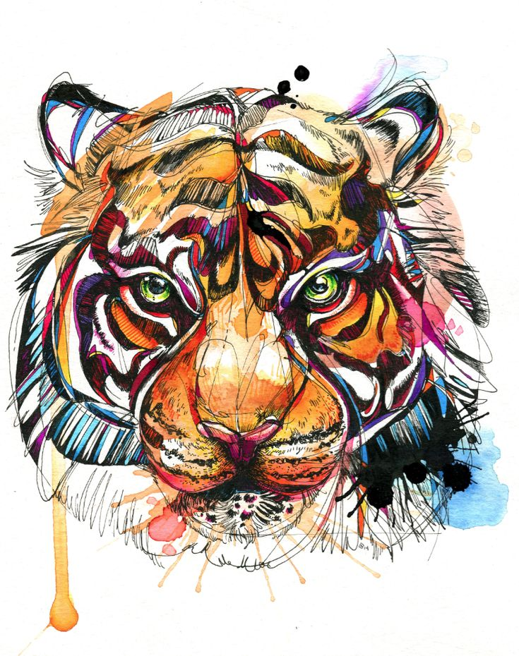 """Bengal Tiger 8.5 x 11"""" India ink, watercolor, Tombow markers. Available on Etsy!: https://www.etsy.com/listing/207866733/brilliant-bengal-85x-11-print by Abby Diamond"""