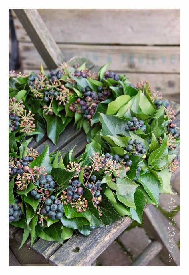 make a wreath with herbs and simple blue berries from local bushes near @Valerie Uhlir home. Green wire and a skillful hand.