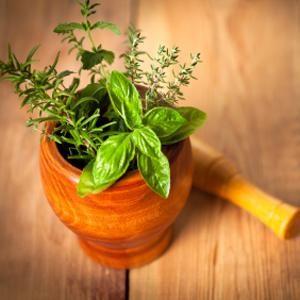 4 astuces pour faire pousser des plantes comestibles  Essayez ces méthodes simples pour faire pousser des fines herbes, des légumes et des germes à l'intérieur de la maison. Donnez à votre petit rebord de fenêtre une allure de grand potager !