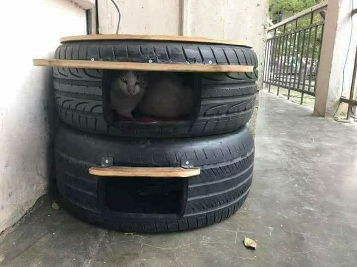 Tire Cat Or Dog House Outdoor Cat Shelter Outdoor Cat House