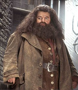 Robbie Coltrane, Scottish actor best known recently for  Hagrid in Harry Potter films