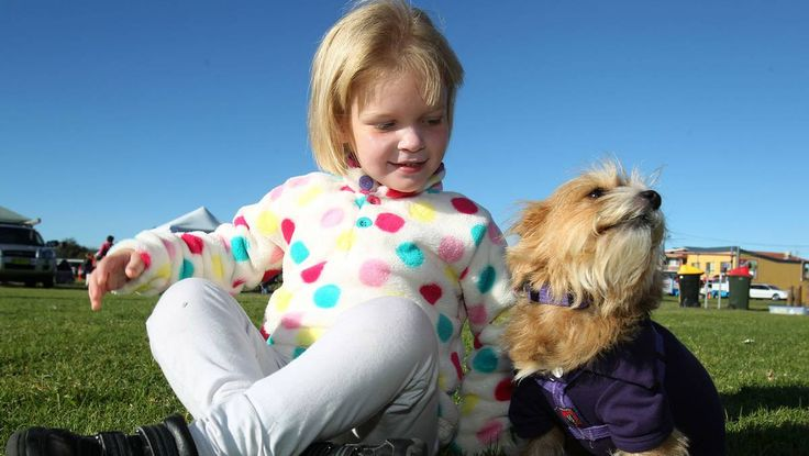 GALLERY: Haute dogs of Million Paws Walk