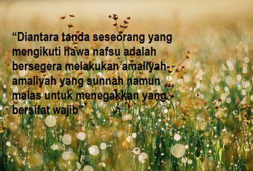 Kata Mutiara Cinta Menurut Islam