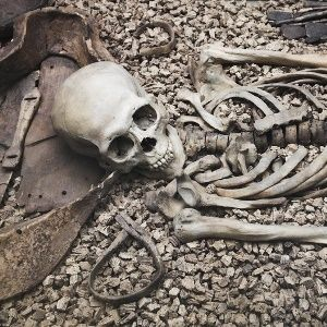 6th-Century skeletons shed light on deadly plague outbreaks