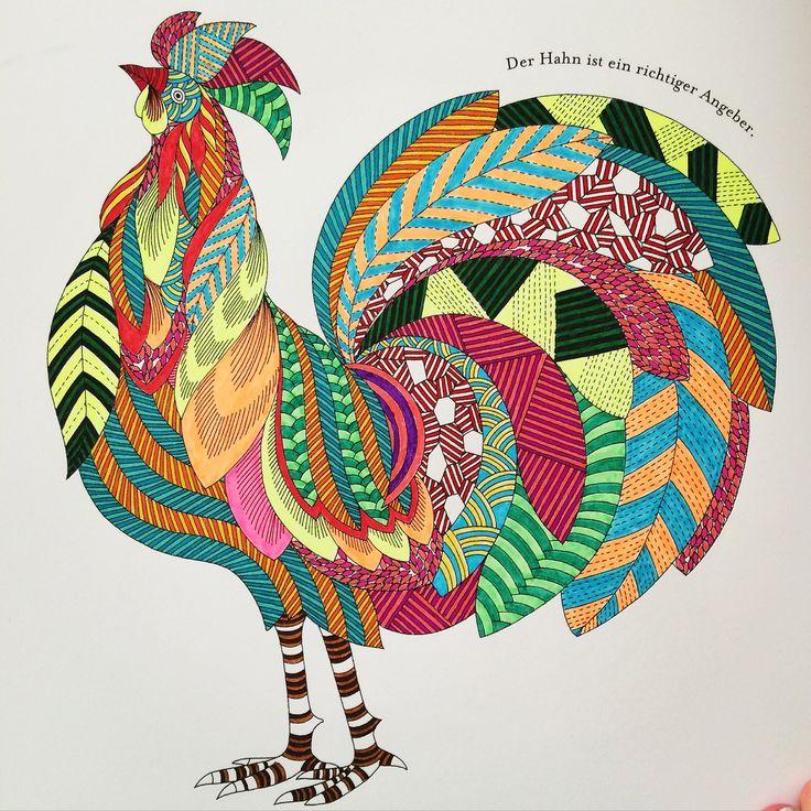 animal kingdom colouring book hippo - Google Search