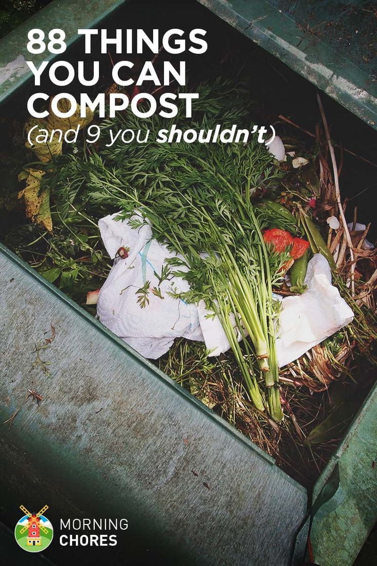 88 Everyday Things You Can Compost (and 9 You Shouldnt)
