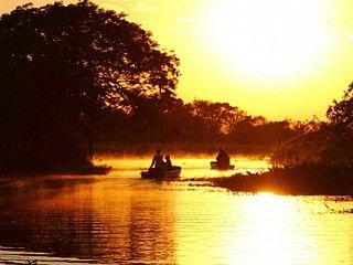 Pantanal Vacation Packages | Brazil Nature Tours