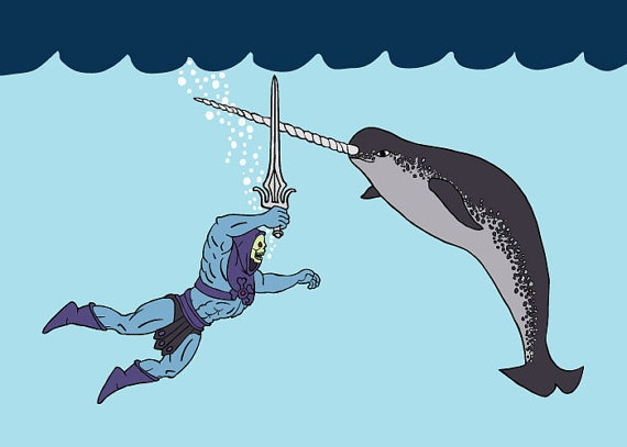 121 best images about Narwhals! on Pinterest | Print..., Sierra ...
