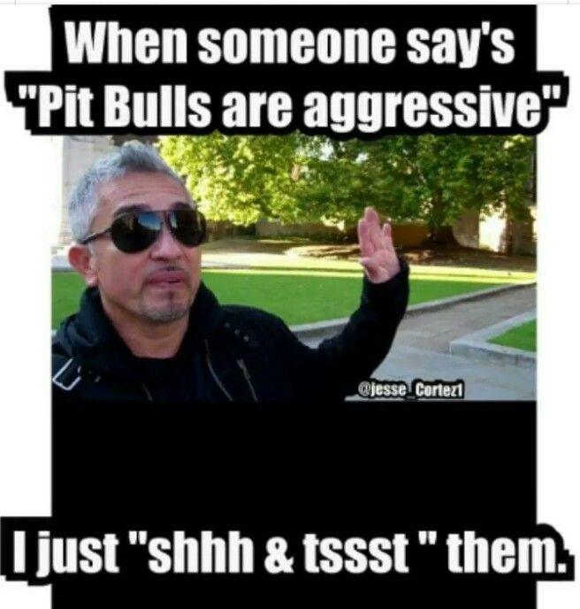 You tell em!!                                                                                                                                                                                 More