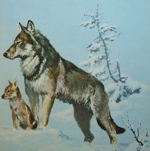 Wolf Mother and Baby Vintage Forest Original Animal by iowajewel, $12.99