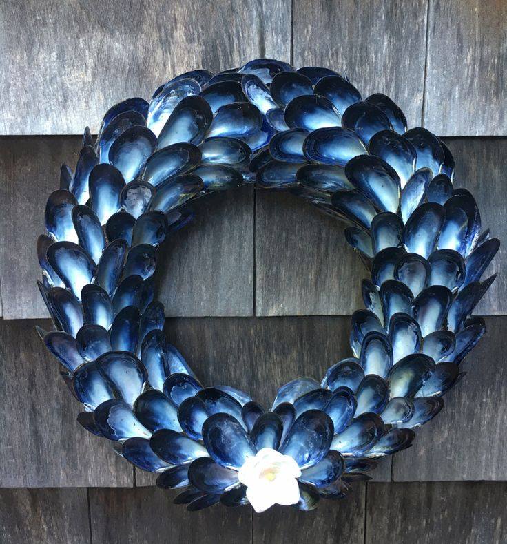 Blue Mussel Shell Wreath Coastal Decor Wreath, Seashell Wreath, Beach Decor Wreath, by CoastalCornucopia on Etsy https://www.etsy.com/listing/478316251/blue-mussel-shell-wreath-coastal-decor