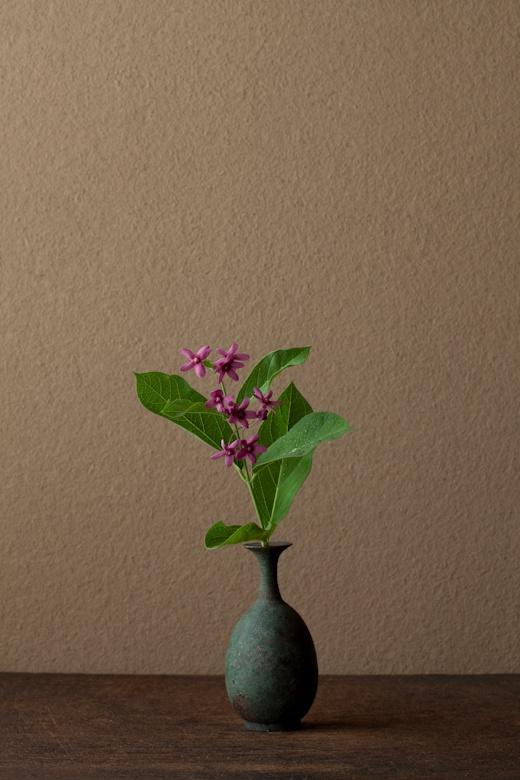 Today's ikebana by Toshiro Kawase, Japan (11/6/2012)