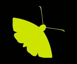The Moth is a New York City based nonprofit organization that conducts live storytelling events.