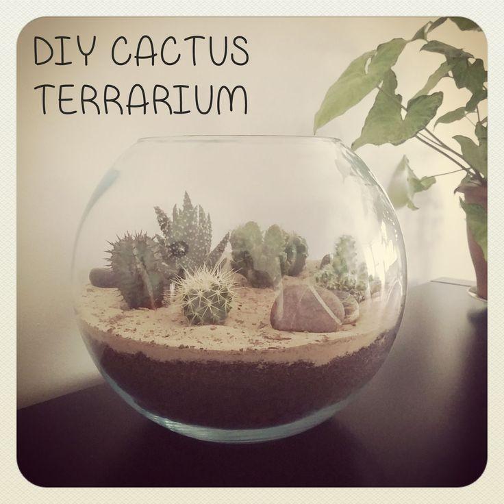 Funky Sunday: Mon petit coin de désert [DIY cactus terrarium]  how to, tutorial, succulents, plants, green, home decor, tuto, déco, comment faire, plantes, jardinage