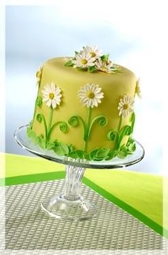 Pretty daisy cake