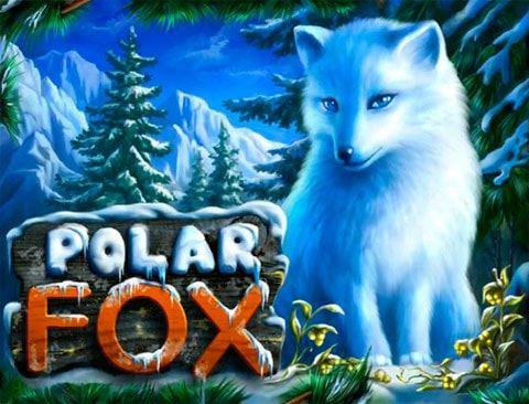 Играть в казино Вулкан на автомате Polar Fox Компания Novomatic продолжает баловать игроков казино вулкан простыми, но прибыльными автоматами на реальные деньги с понятным интерфейсом. Polar Fox – это классический слот, главными героями которого являются полярные лисы в б