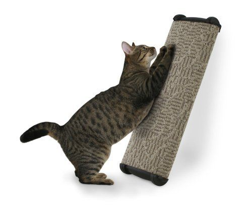 26', Attractive Carpeted Post and Stylish End Cap Scratching Post -- See this great product. (This is an affiliate link and I receive a commission for the sales)