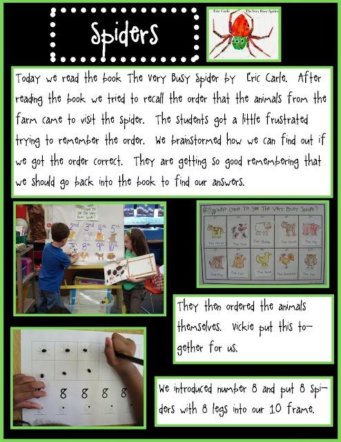 Golden Gang Kindergarten: Spiders