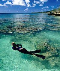 Snorkeling in Jervis Bay, Australia