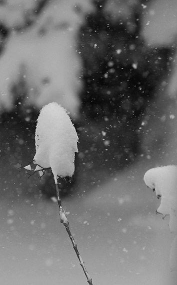 İstanbul kar  Snow Turkey