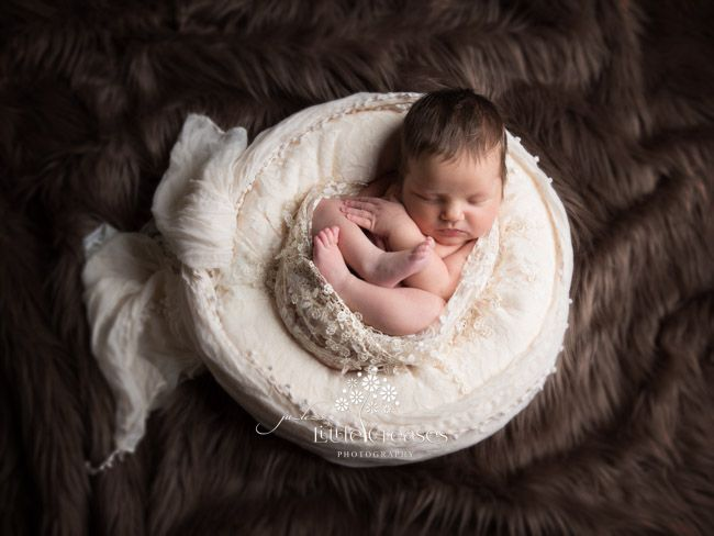 Little creases leicester newborn baby family photographer newborn photography pinterest babies leicester and galleries
