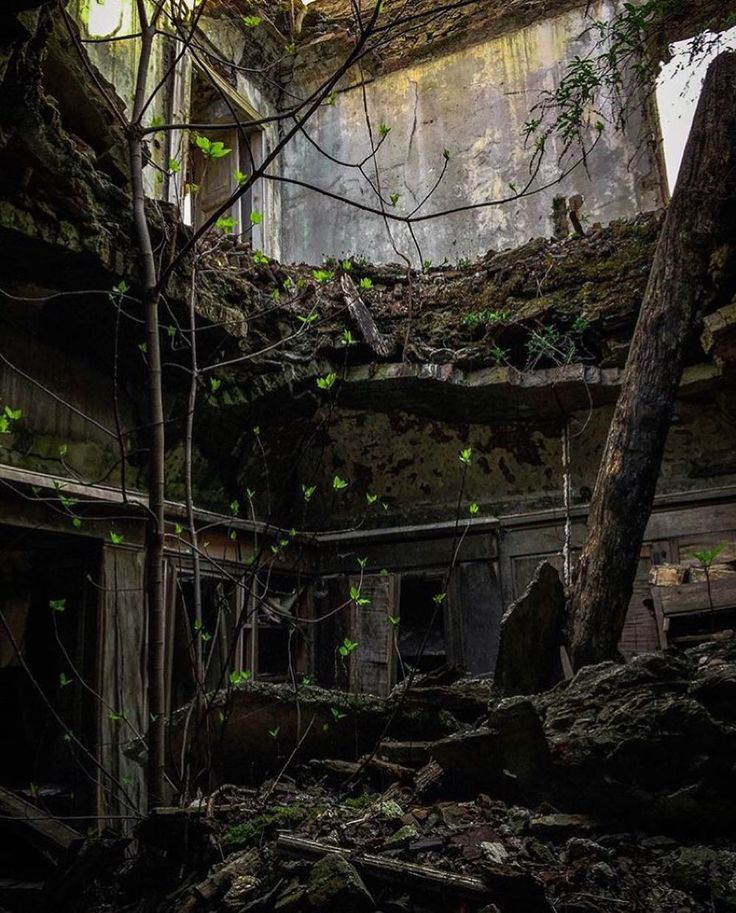 Abandoned - Featured artist: @ee_urbex