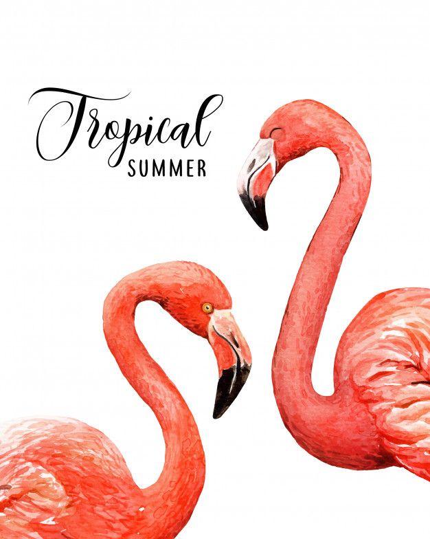 Flamingo Appears On Pobjoy S New Bi Coloured 4