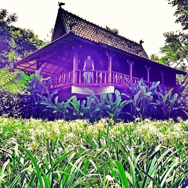 Gula Bodas Cottage