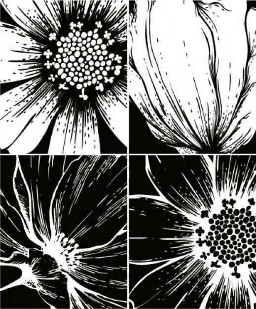 estampas-florais-vector