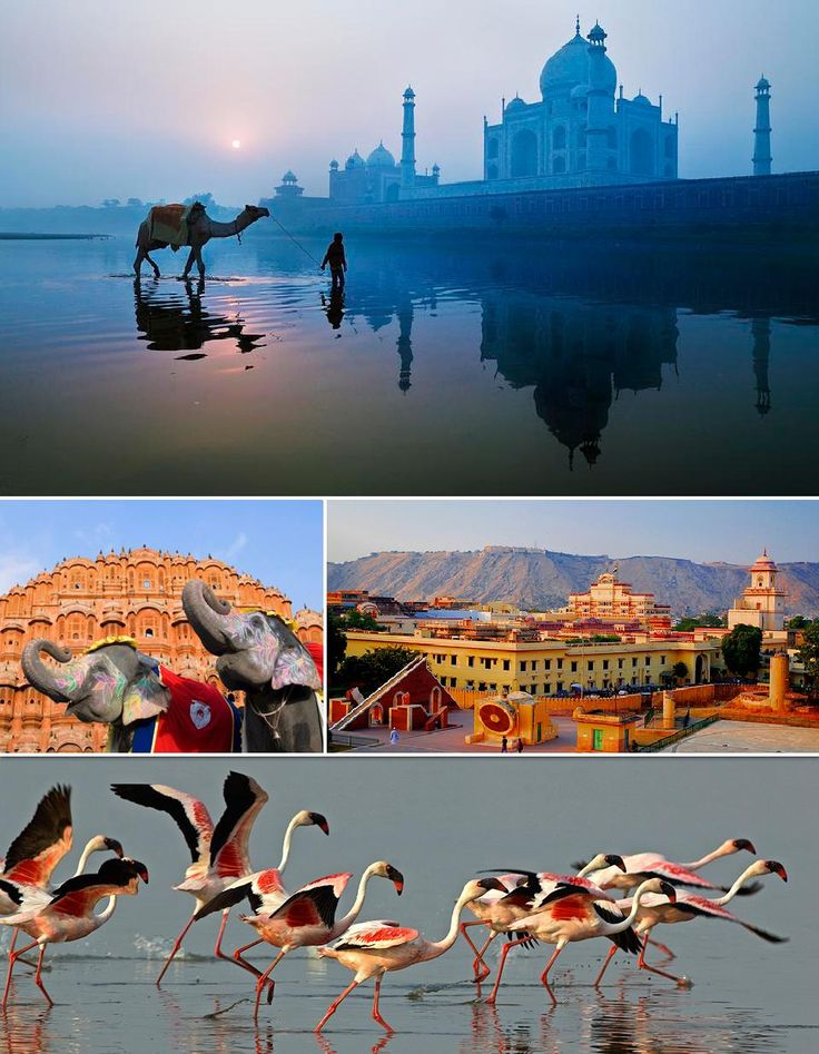 Golden Triangle with colors of Gujrat - India Tours – Golden Triangle Tours @ ToursfromDelhi  http://toursfromdelhi.com/12-days-tour-of-golden-triangle-with-gujarat